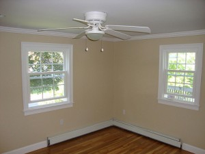 energy efficient windows and fan